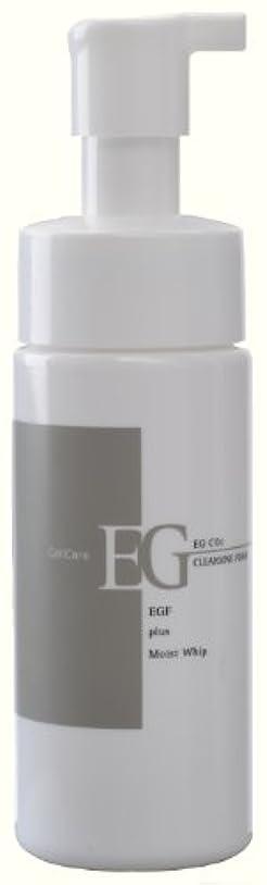 質素なスローガン動かないセルケア EG炭酸洗顔フォーム 150ml