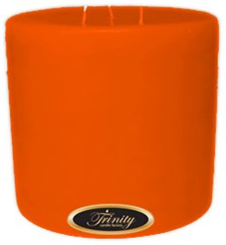 送った造船証明Trinity Candle工場 – フロリダオレンジ – Pillar Candle – 6 x 6