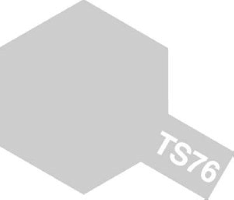 タミヤカラー スプレーカラー TS-76 マイカシルバー