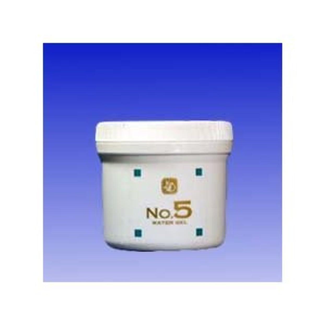 夜間人物手数料顔を洗う水 ウォーターグルNO5 250g