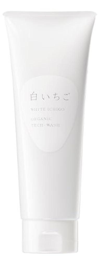 羊のリスキーな送金WHITE ICHIGO(ホワイトイチゴ) オーガニック テック-ウォッシュ 120g