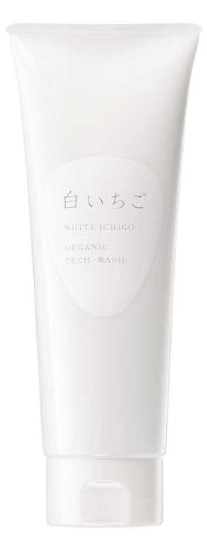 もしサミュエル豊富WHITE ICHIGO(ホワイトイチゴ) オーガニック テック-ウォッシュ 120g
