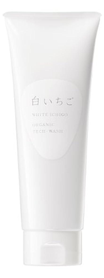 暴徒インターネット行方不明WHITE ICHIGO(ホワイトイチゴ) オーガニック テック-ウォッシュ 120g
