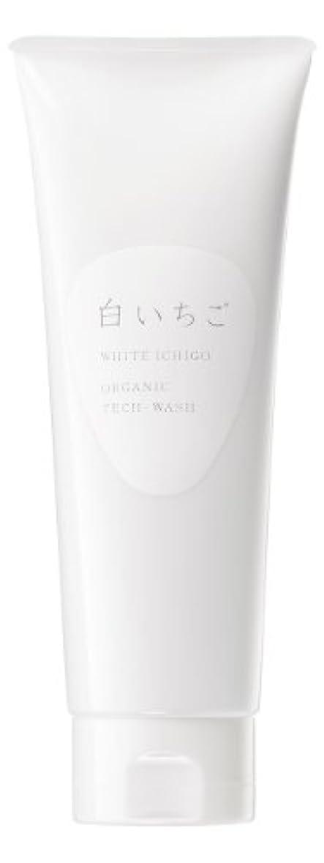 シャトルシリンダー素晴らしさWHITE ICHIGO(ホワイトイチゴ) オーガニック テック-ウォッシュ 120g