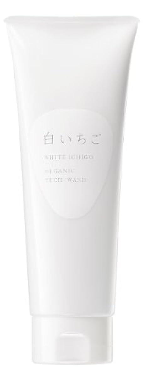 複数空洞手入れWHITE ICHIGO(ホワイトイチゴ) オーガニック テック-ウォッシュ 120g