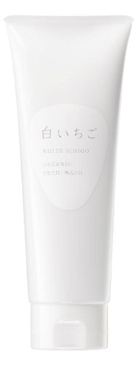 フレキシブル一過性自分の力ですべてをするWHITE ICHIGO(ホワイトイチゴ) オーガニック テック-ウォッシュ 120g