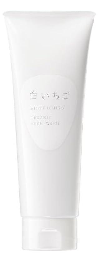 ペイント旅指WHITE ICHIGO(ホワイトイチゴ) オーガニック テック-ウォッシュ 120g