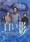 DVD白い影(5)