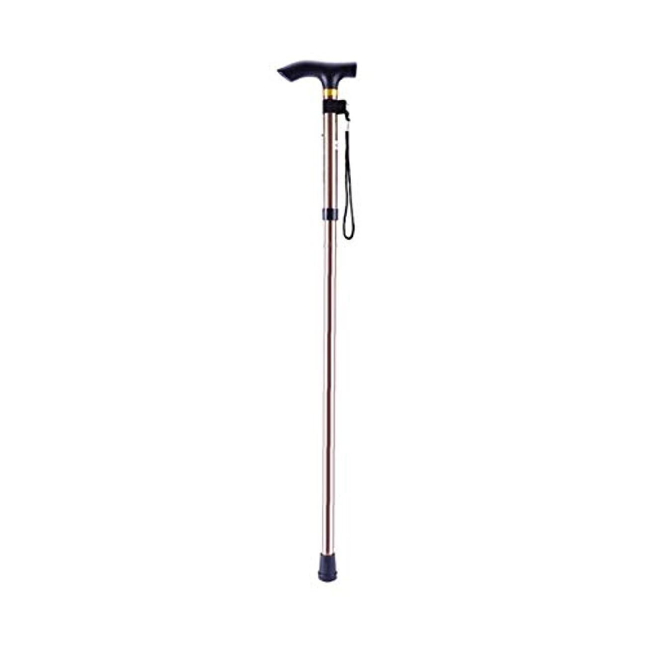 繕う皿シットコムDeeploveUU アルミ金属4つのセクション杖簡単に調整可能な折りたたみ折りたたみ式旅行杖キャンプトレッキングスティック