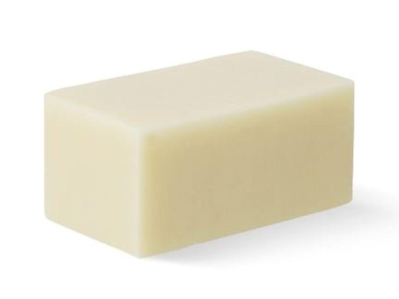 リスナー値するエイズ[Abib] Facial Soap ivory Brick 100g/[アビブ]フェイシャルソープ アイボリー ブリック100g [並行輸入品]