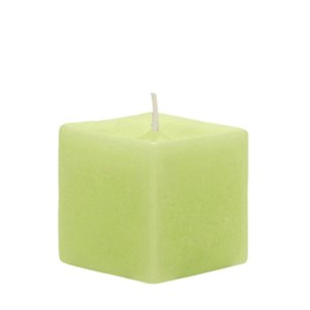 エコーファンブル矢印ナチュレ キューブ ライトグリーン