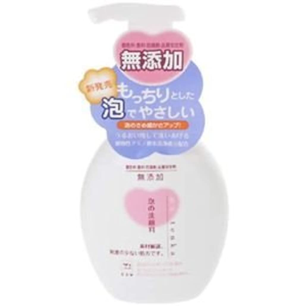 ケントコックラショナルカウブランド 無添加 泡の洗顔料 ポンプ 200ml 6セット