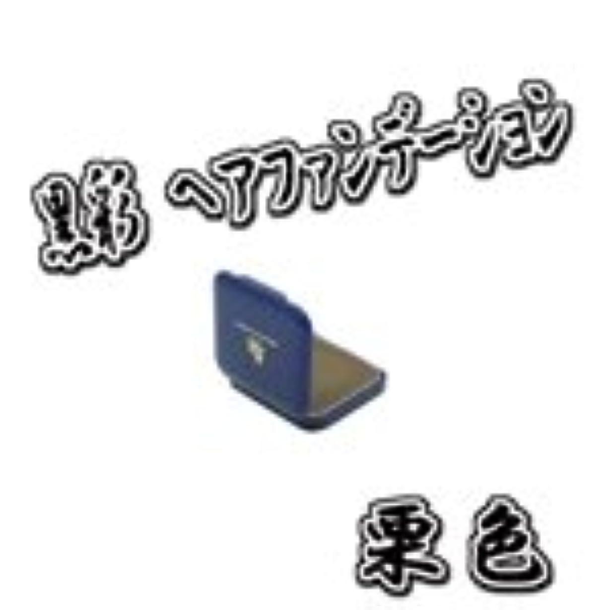 和解する可能性穴AMOROS アモロス 黒彩 ヘアファンデーション 【栗】 13g ミニケース パフ付