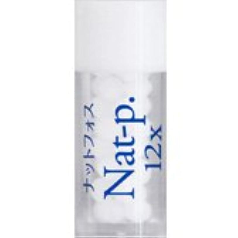 珍味変えるアルプス36バイタルエレメントキット 対応 各種 (10) Nat-p.12X ナットフォス)