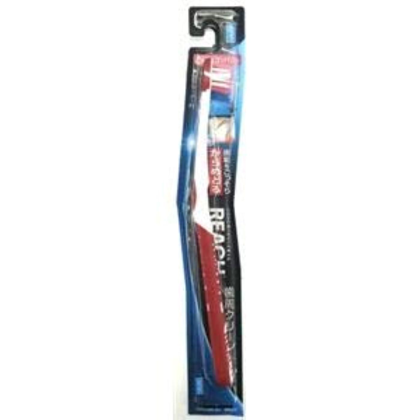土鉛限りなく(まとめ)銀座ステファニー リーチ歯ブラシ リーチ 歯周クリーン とってもコンパクト ふつう 【×12点セット】