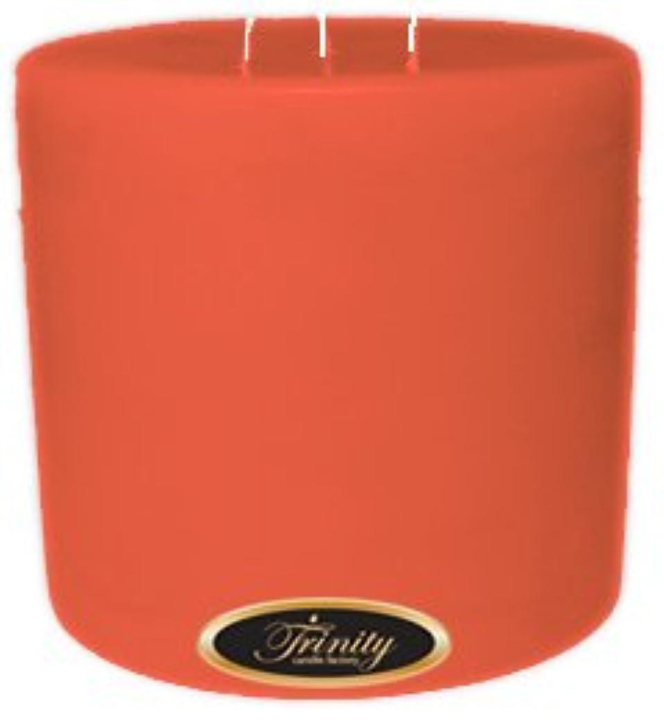 取得地理真珠のようなTrinity Candle工場 – ジョージアピーチ – Pillar Candle – 6 x 6