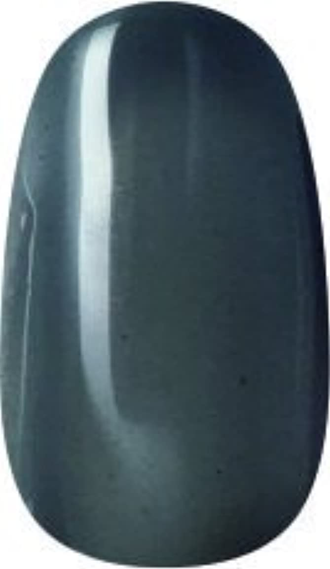 ファブリック語実際ラク カラージェル(66-クリアブラック)8g 今話題のラクジェル 素早く仕上カラージェル 抜群の発色とツヤ 国産ポリッシュタイプ オールインワン ワンステップジェルネイル RAKU COLOR GEL #66