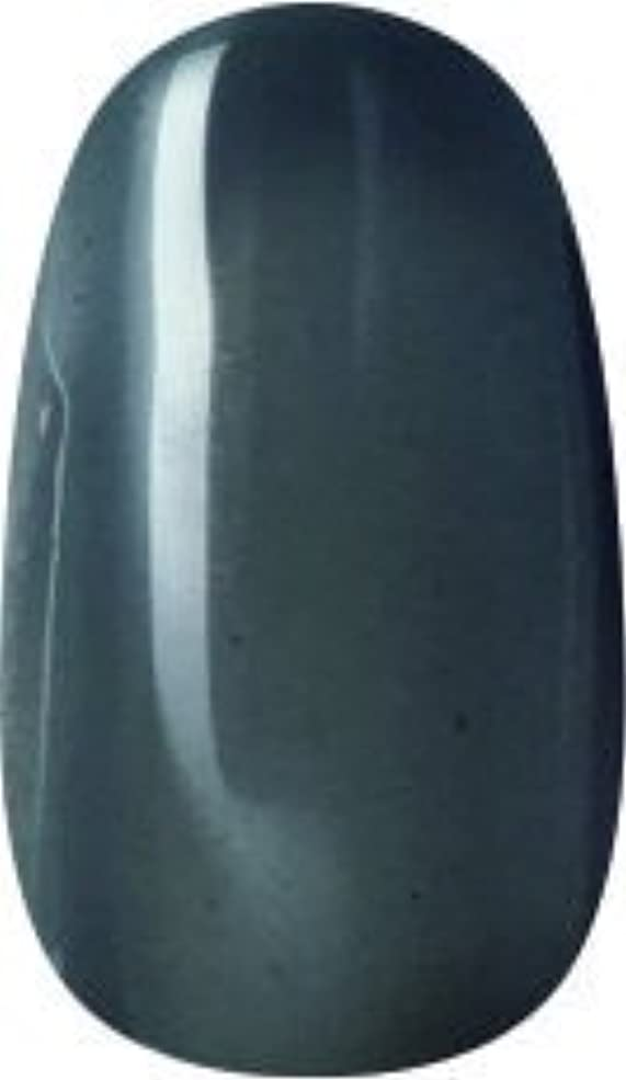 遺棄された墓地障害者ラク カラージェル(66-クリアブラック)8g 今話題のラクジェル 素早く仕上カラージェル 抜群の発色とツヤ 国産ポリッシュタイプ オールインワン ワンステップジェルネイル RAKU COLOR GEL #66