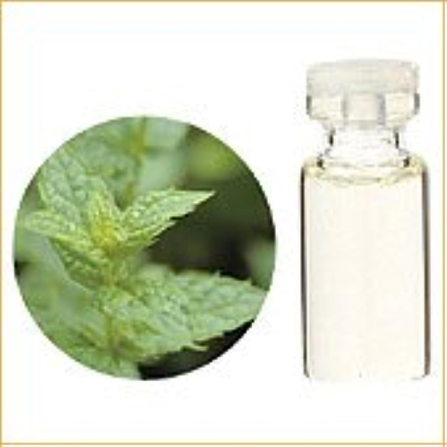 枯渇カロリーリズム生活の木 アロマオイル スペアミント 精油 10ml (Tree of Life Essential Oil/エッセンシャルオイル)