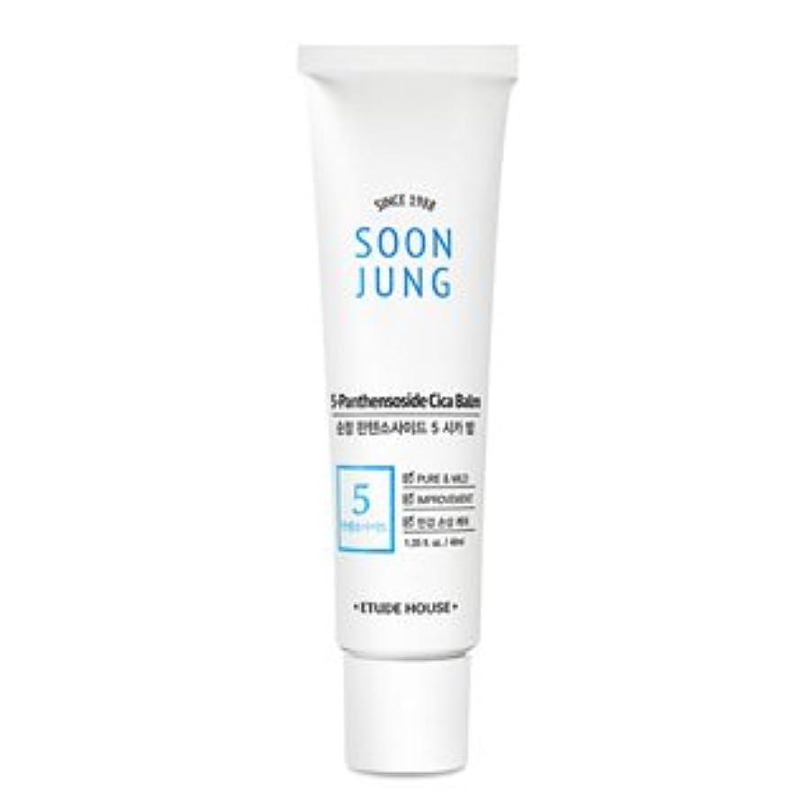 木製錆びどれ[New] ETUDE HOUSE Soon Jung 5-Panthensoside Cica Balm/エチュードハウス スンジョン 5-パンテンソシド シカ バーム (40ml) [並行輸入品]