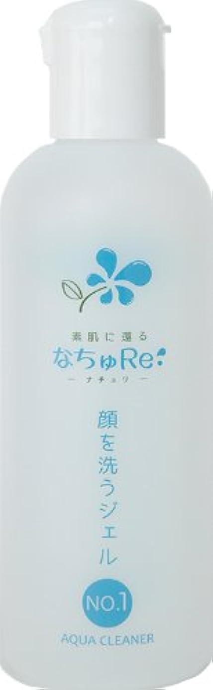 宣伝アーティファクト完璧なNO.1 アクアクリーナー「顔を洗うジェル」(250ml)