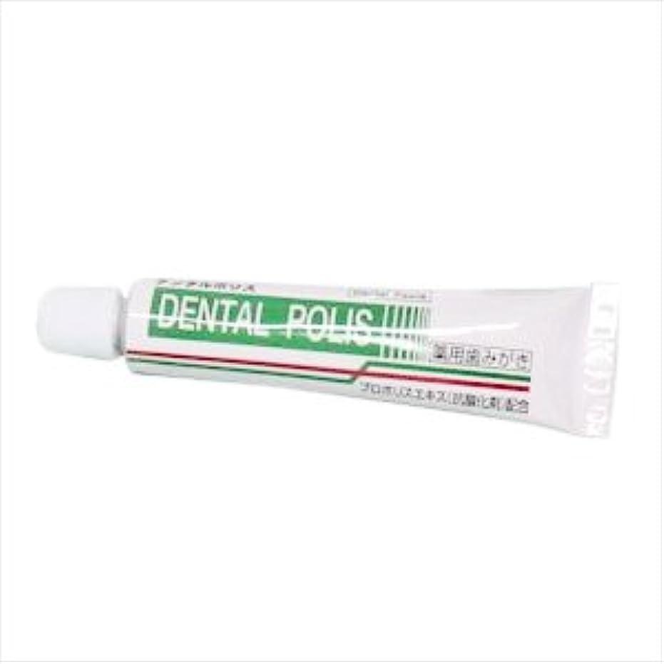 切り離す供給レギュラー医薬部外品 デンタルポリスDX(8g) お試し用