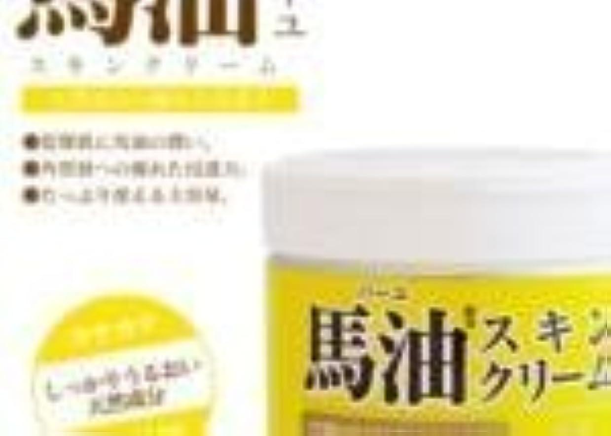 【まとめ買い】ロッシモイストエイド 馬油スキンクリーム【6個入り】