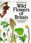Wild Flowers of Britain 画像