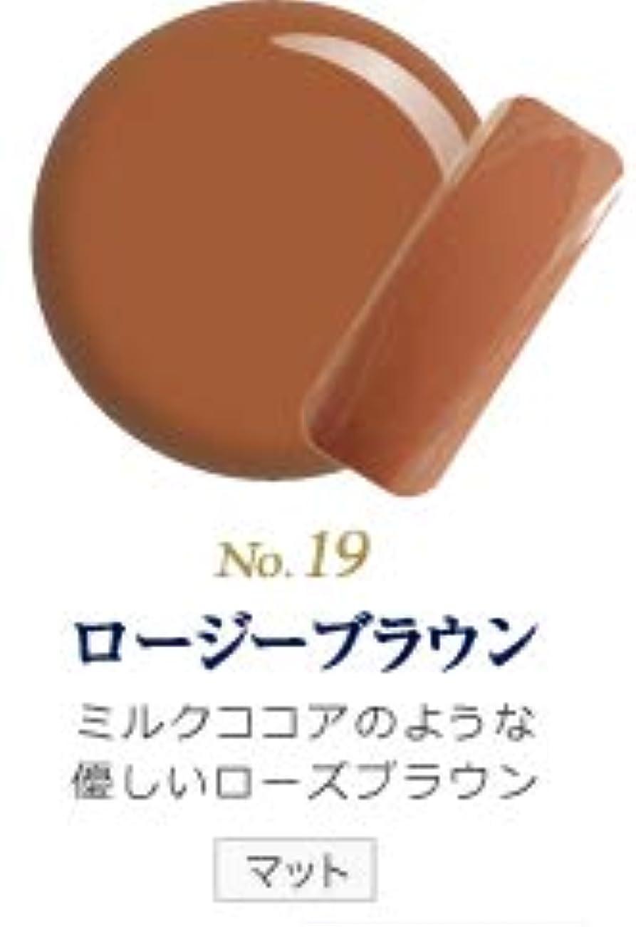 きつく鎮静剤阻害するカラージェル 発色抜群 削らなくてもオフが出来る 新グレースジェルカラーNo.11~No.209 (ロージーブラウン)