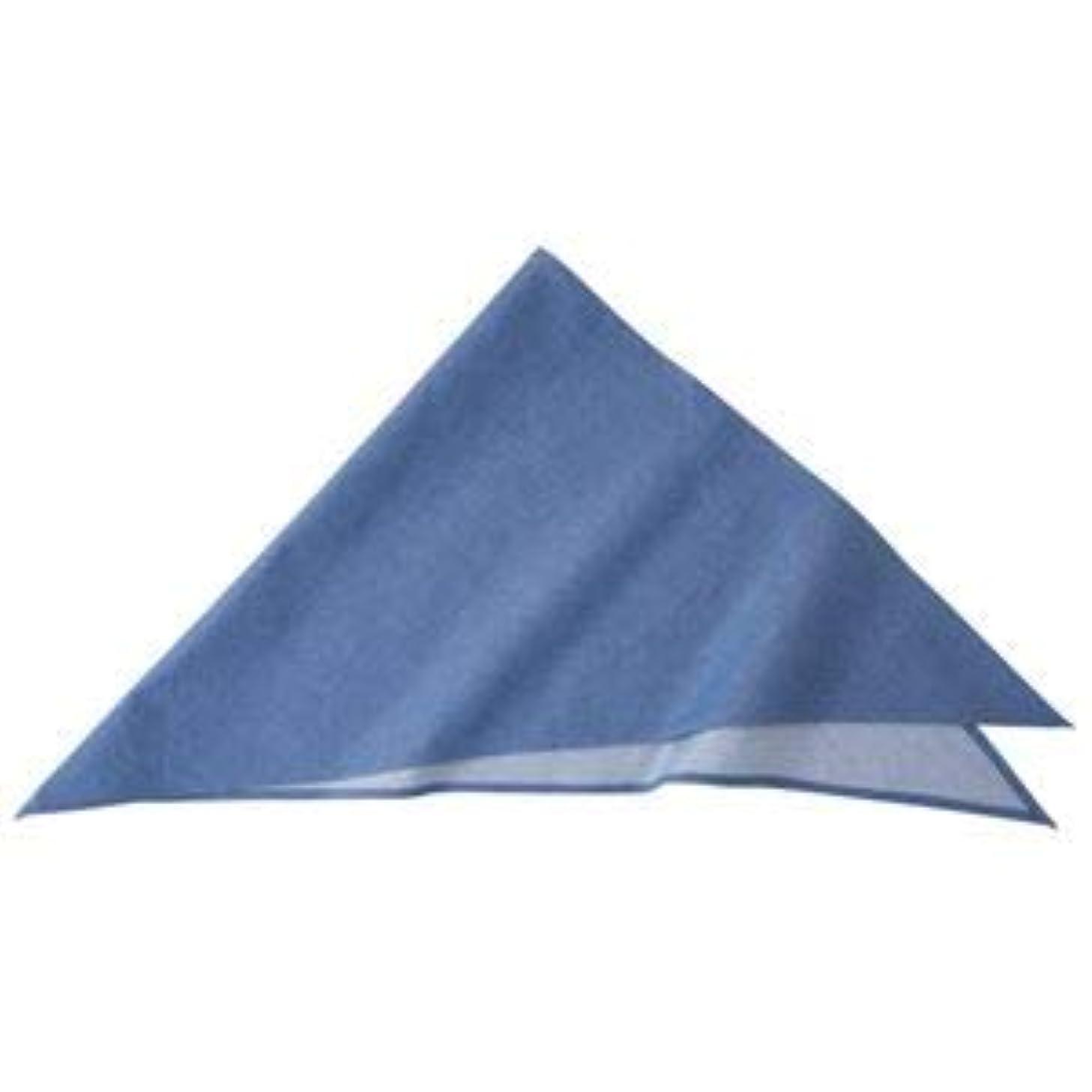 綺麗な役員実験的ダンガリー三角巾 ブルー KMB2940-2