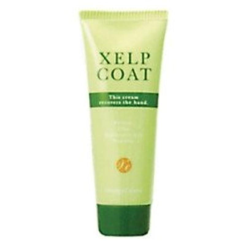 ノベルティ冷酷なみぞれケイルコート 80g XELPCOAT 美容師さんのためのハンドクリーム