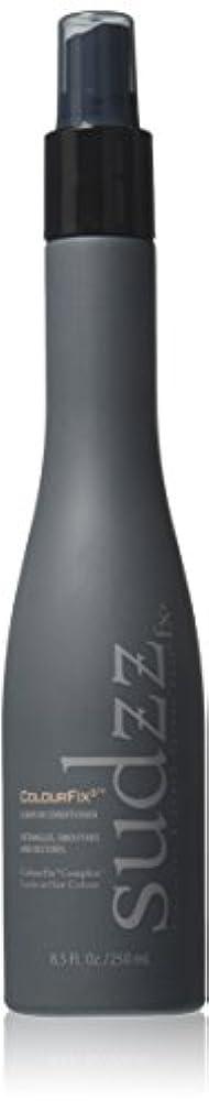 悲観主義者賛辞ファンドSUDZZFX ColourFixは、リーブインコンディショナー、8.5液量オンス 8.5オンス