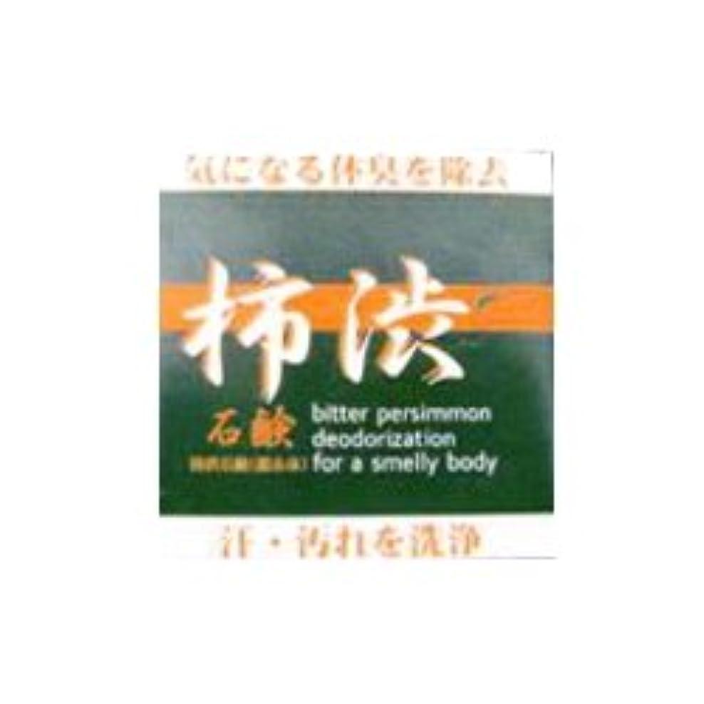 頻繁に細い便宜柿渋石鹸 100g スキンケア 洗顔 石けん