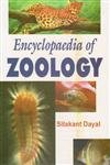 Encyclopaedia of Zoology