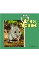 It's a Mouse (Creatures All Around Us)