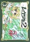 魔法騎士(マジックナイト)レイアース2 (3)
