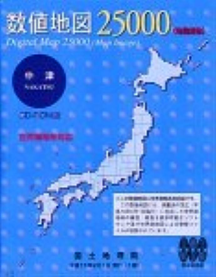 ラインナップ薬理学行動数値地図 25000 (地図画像) 中津