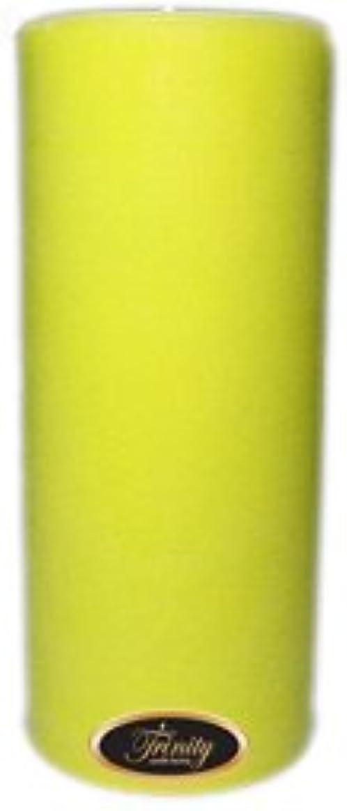 ベックス症候群意気込みTrinity Candle工場 – レモングラス – Pillar Candle – 4 x 9