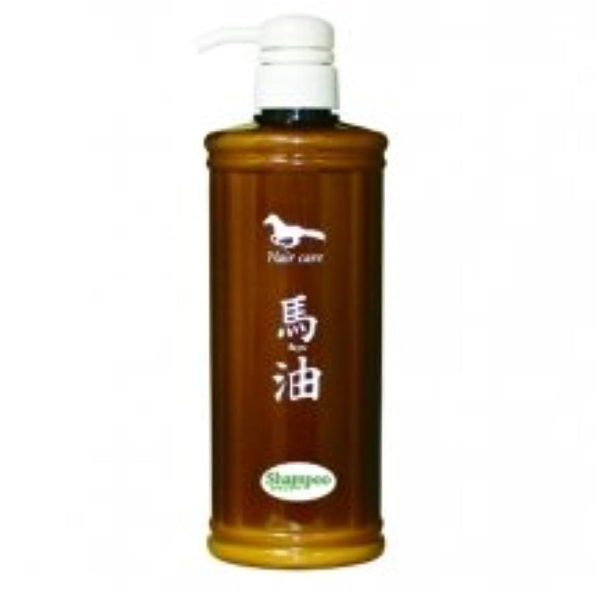 アルミニウムバッグひそかにりりか AKシャンプー 馬油シャンプー 馬油が髪を保護、しっとりうるおう仕上がり 無添加 日本製