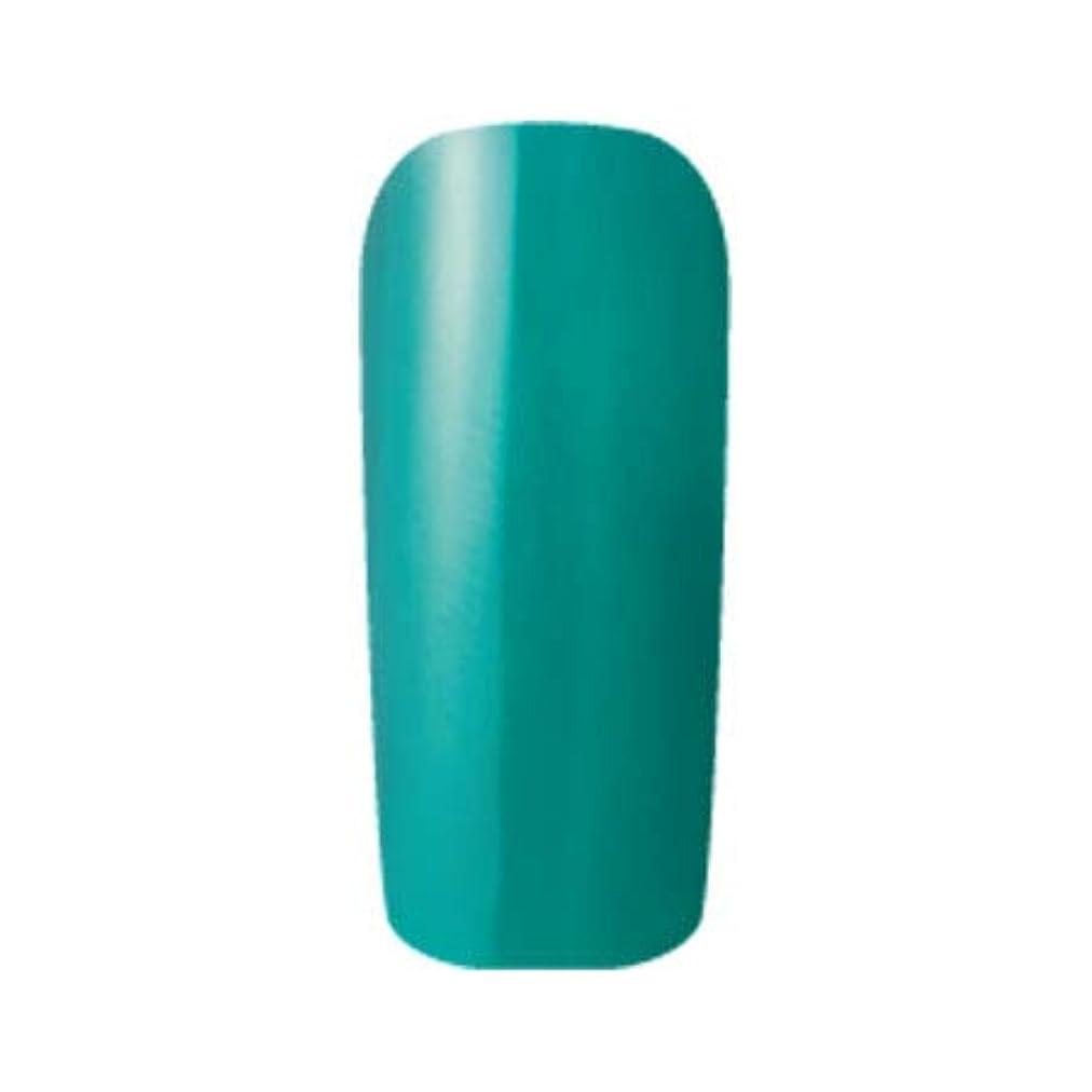 気づくなる換気する歴史的Fleurir カラージェル C17 ボトルグリーン 4ml UV/LED対応