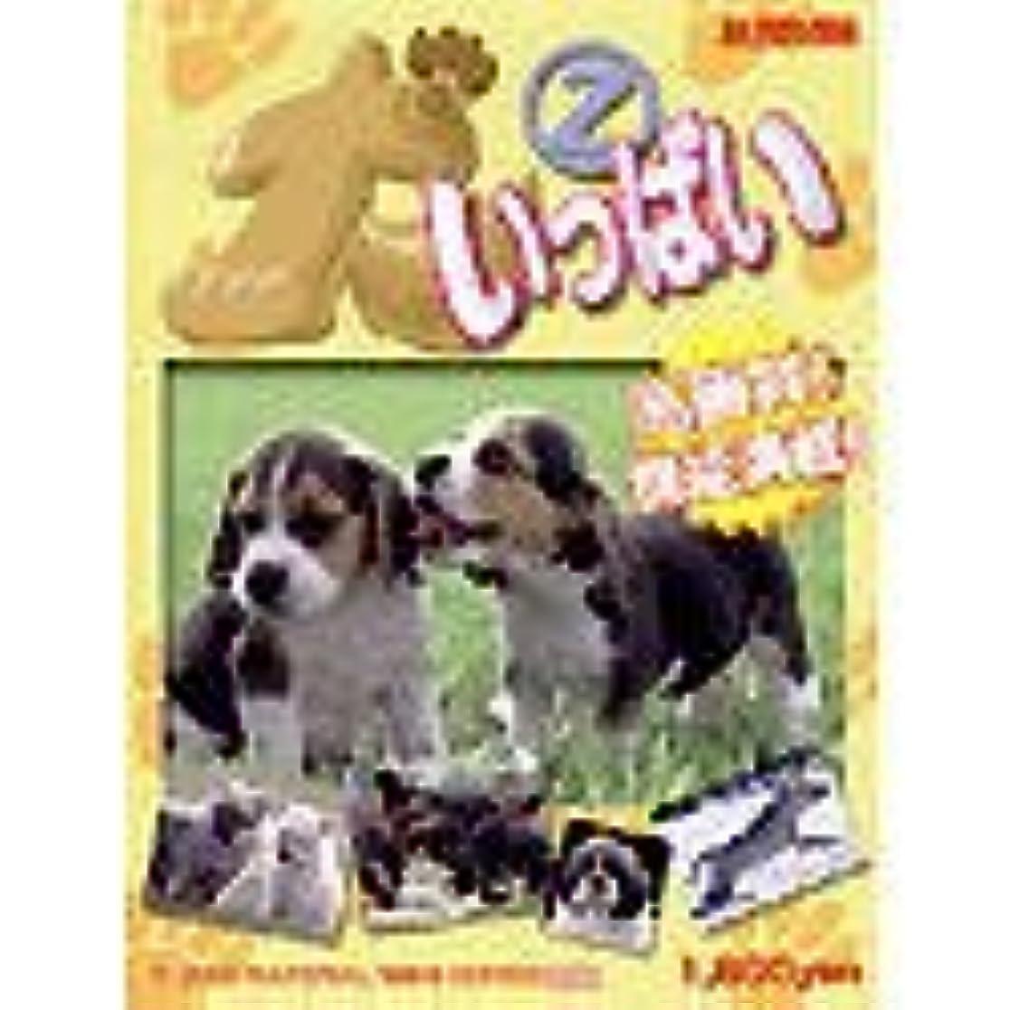 狂った知覚貫通Power Material 1800 Series 犬いっぱい 2