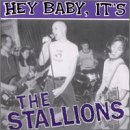 Hey Baby, It's the Stallions [12 inch Analog]