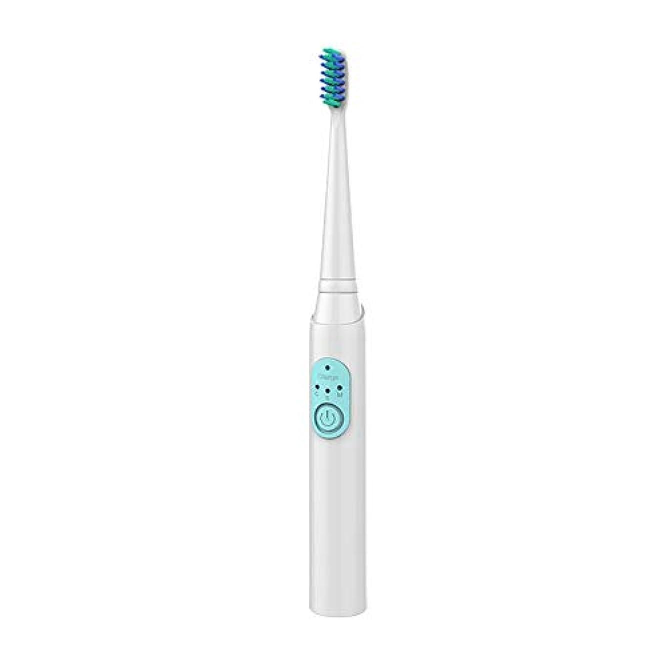 文字通り完全にからに変化するWen Ying 大人の電動歯ブラシ充電式ソニックホワイトニング歯自動防水電動歯ブラシヘッドソフトブラシ 電動歯ブラシ
