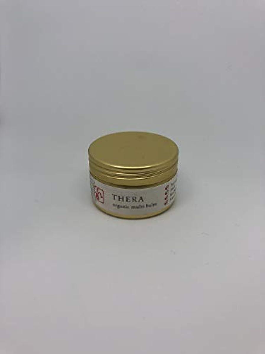 技術的な防腐剤スケッチTHERA(テラ) kampoソリッドオイル sui 25g
