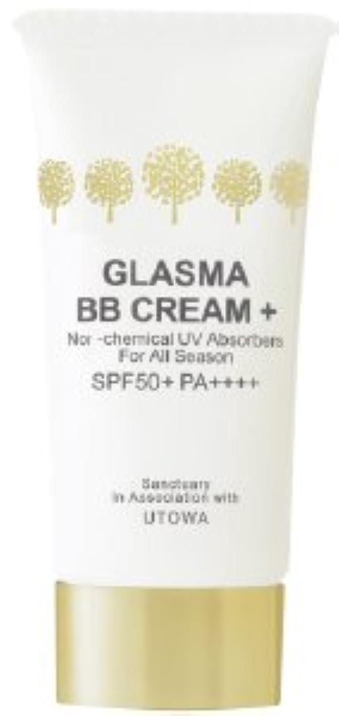 シルク噴出する王室グラスマ BBクリーム プラス01