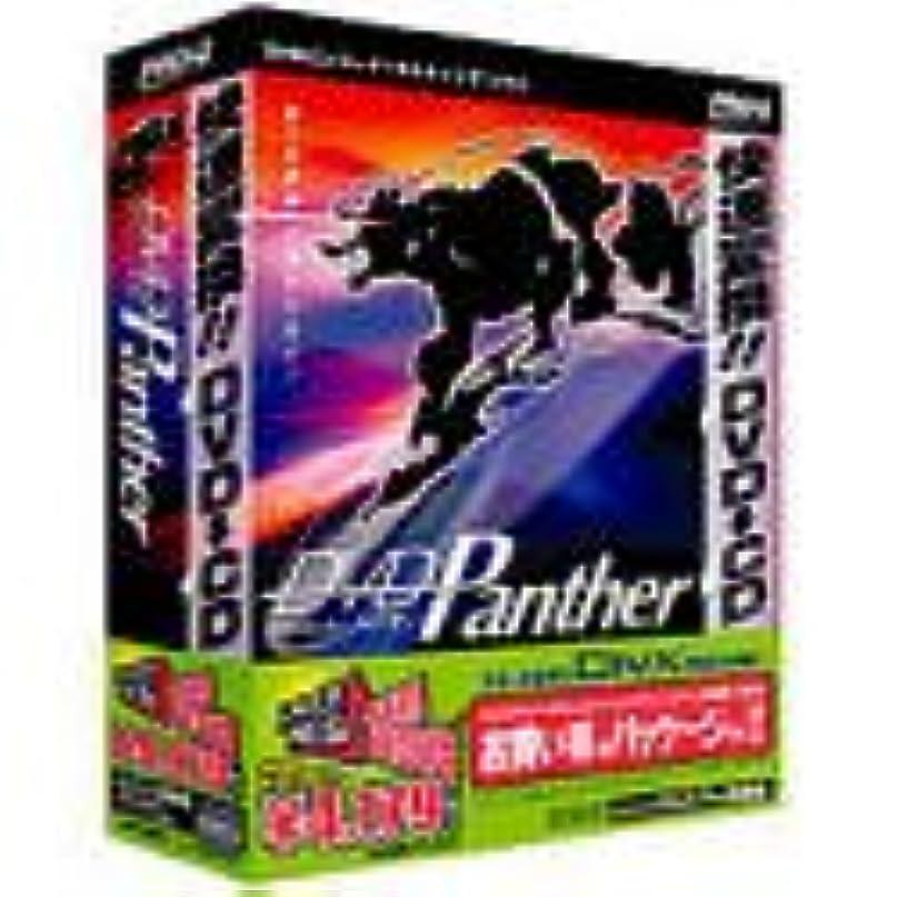 クモ経歴温かいDVD Panther トライ!! PRO-G 特別限定版 DivX Pro 同梱