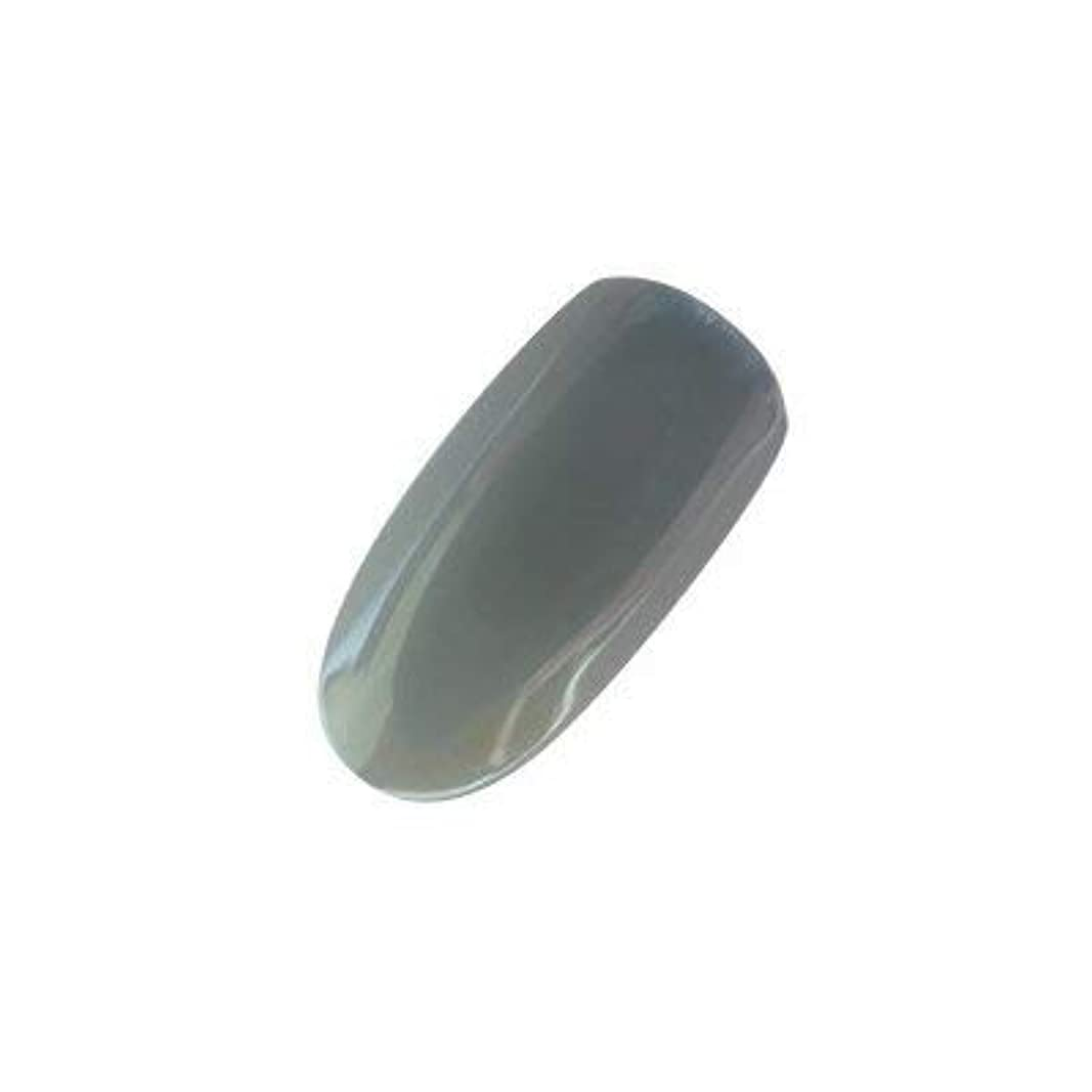マージシフト君主制アイニティ カラージェル 009 テクノグレー 5g