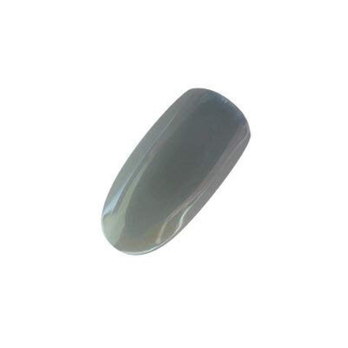 ワードローブブロンズインシュレータアイニティ カラージェル 009 テクノグレー 5g
