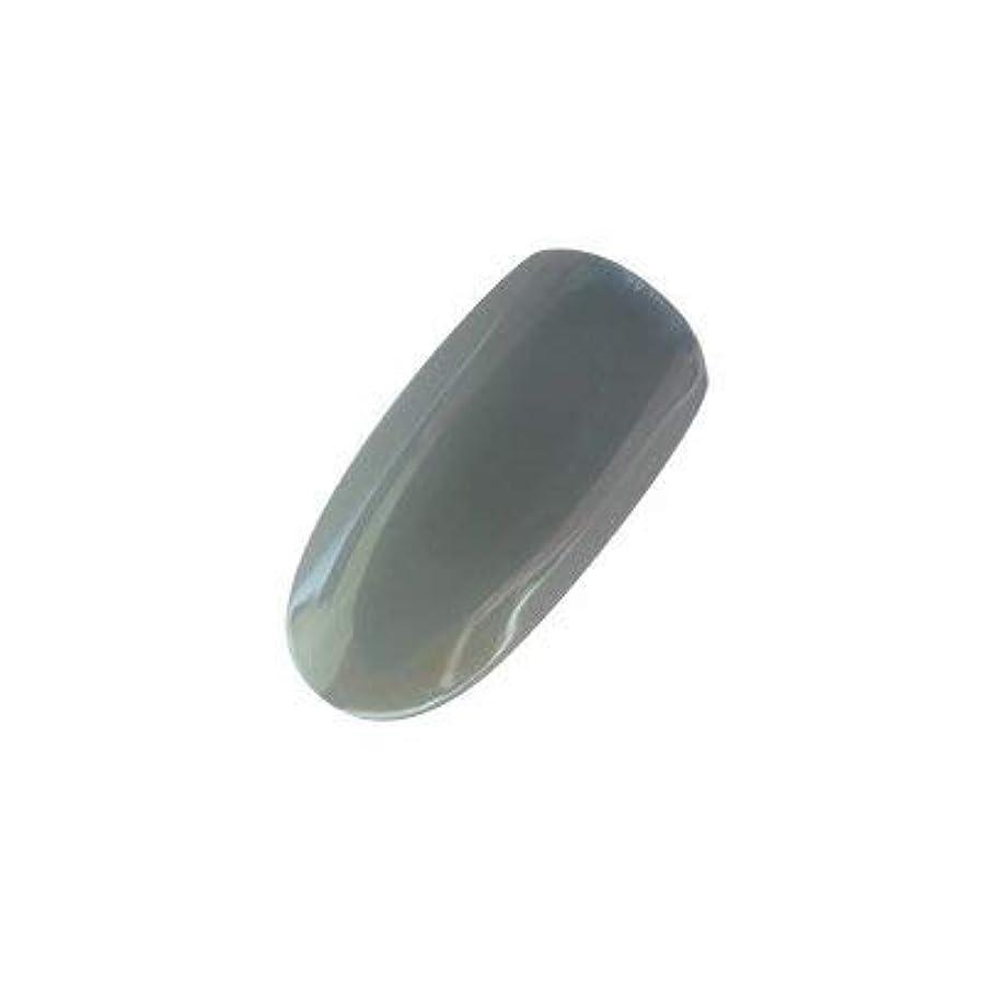 面倒天才真鍮アイニティ カラージェル 009 テクノグレー 5g