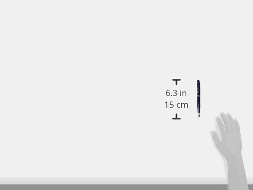 2位:プラチナ万年筆『センチュリー(PNB-15000CR)』(日)